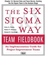 Обложка книги  - Six Sigma Way Team Fieldbook, Chapter 14