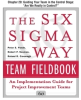 Обложка книги  - Six Sigma Way Team Fieldbook, Chapter 20
