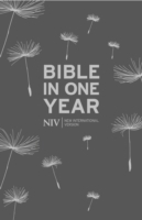 Обложка книги  - NIV Bible In One Year Hardback