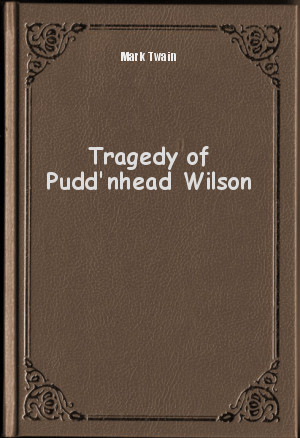 a summary of the story puddnhead wilson Puddnhead wilson american wilson: chapters 5 7, a summary of chapters 5 7 in mark twain's pudd monitor the story of the revolutionary ship and the man.