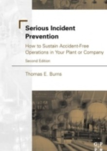 Обложка книги  - Serious Incident Prevention