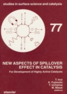 Обложка книги  - New Aspects of Spillover Effect in Catalysis
