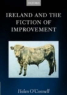 Обложка книги  - Ireland and the Fiction of Improvement