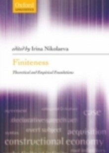 Обложка книги  - Finiteness: Theoretical and Empirical Foundations