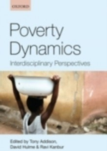 Обложка книги  - Poverty Dynamics: Interdisciplinary Perspectives