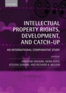 Обложка книги  - Intellectual Property Rights, Development, and Catch Up: An International Comparative Study