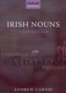 Обложка книги  - Irish Nouns: A Reference Guide