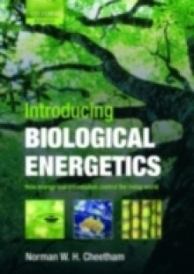 Обложка книги  - Introducing Biological Energetics: How Energy and Information Control the Living World