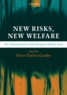 Обложка книги  - New Risks, New Welfare: The Transformation of the European Welfare State