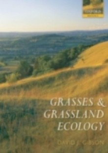 Обложка книги  - Grasses and Grassland Ecology