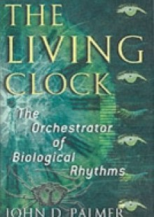 Обложка книги  - Living Clock: The Orchestrator of Biological Rhythms