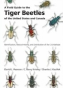 Обложка книги  - Field Guide to the Tiger Beetles of the United States and Canada: Identification, Natural History, and Distribution of the Cicindelidae