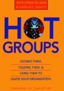 Обложка книги  - Hot Groups: Seeding Them, Feeding Them, and Using Them to Ignite Your Organization