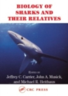 Обложка книги  - Biology of Sharks and Their Relatives