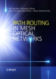 Обложка книги  - Path Routing in Mesh Optical Networks