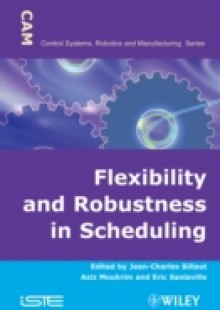 Обложка книги  - Flexibility and Robustness in Scheduling