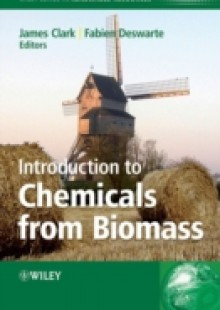 Обложка книги  - Introduction to Chemicals from Biomass