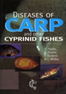 Обложка книги  - Diseases of Carp and Other Cyprinid Fishes