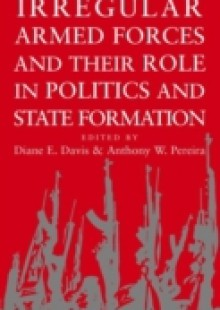 Обложка книги  - Irregular Armed Forces and their Role in Politics and State Formation