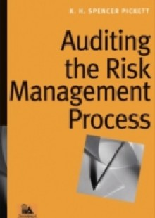 Обложка книги  - Auditing the Risk Management Process