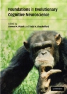 Обложка книги  - Foundations in Evolutionary Cognitive Neuroscience