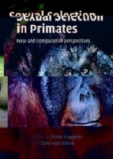 Обложка книги  - Sexual Selection in Primates