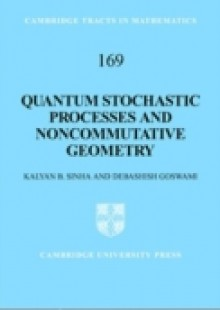 Обложка книги  - Quantum Stochastic Processes and Noncommutative Geometry