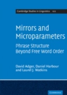 Обложка книги  - Mirrors and Microparameters