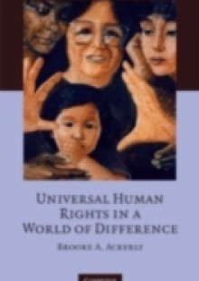 Обложка книги  - Universal Human Rights in a World of Difference