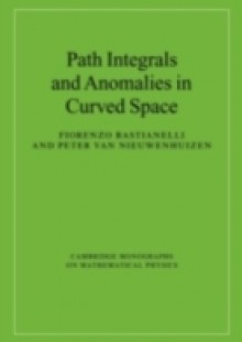Обложка книги  - Path Integrals and Anomalies in Curved Space