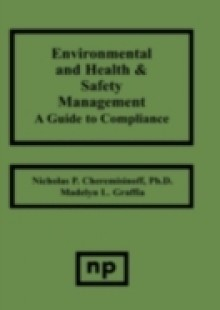 Обложка книги  - Environmental and Health and Safety Management