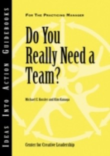 Обложка книги  - Do You Really Need a Team?