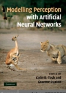 Обложка книги  - Modelling Perception with Artificial Neural Networks