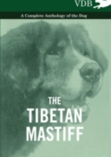 Обложка книги  - Tibetan Mastiff – A Complete Anthology of the Dog