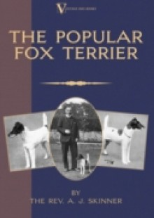 Обложка книги  - Popular Fox Terrier (Vintage Dog Books Breed Classic – Smooth Haired + Wire Fox Terrier)