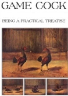 Обложка книги  - Game Cock – Being a Practical Treatise on Breeding, Rearing, Training, Feeding, Trimming, Mains, Heeling, Spurs, Etc. (History of Cockfighting Ser