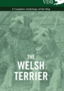 Обложка книги  - Welsh Terrier – A Complete Anthology of the Dog