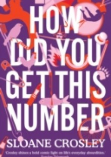Обложка книги  - How Did You Get This Number