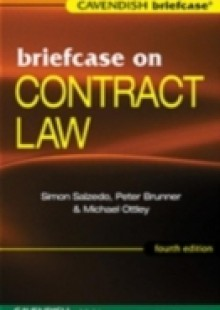 Обложка книги  - Briefcase on Contract Law