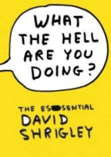 Обложка книги  - What The Hell Are You Doing?: The Essential David Shrigley