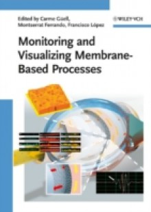 Обложка книги  - Monitoring and Visualizing Membrane-Based Processes