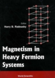 Обложка книги  - Magnetism In Heavy Fermion Systems