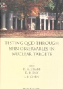Обложка книги  - Testing Qcd Through Spin Observables In Nuclear Targets