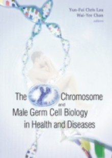 Обложка книги  - Y Chromosome And Male Germ Cell Biology In Health And Diseases, The