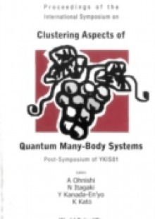 Обложка книги  - Clustering Aspects Of Quantum Many-body Systems, Proceedings Of The International Symposium On Post-symposium Of Ykis01