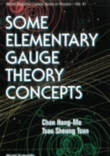 Обложка книги  - Some Elementary Gauge Theory Concepts