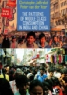 Обложка книги  - Patterns of Middle Class Consumption in India and China