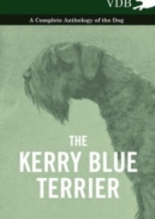 Обложка книги  - Kerry Blue Terrier – A Complete Anthology of the Dog