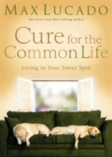 Обложка книги  - Cure for the Common Life