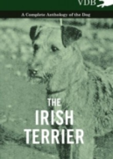 Обложка книги  - Irish Terrier – A Complete Anthology of the Dog